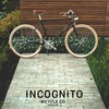 Incognito Bicycle Co. Moscow