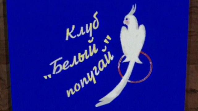 """Клуб """"Белый попугай"""" (1-й канал Останкино, зима 1994) О..."""