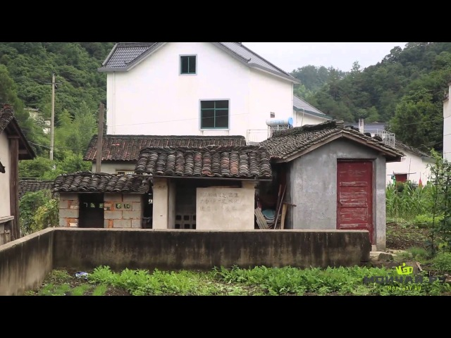 Зеленый чай Тай Пин Хоу Куй Озеро Тайпин Ху Регион Синминсян и окрестности