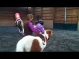 Toddler and Pony Natural Horsemanship at Pony Pros in Bend, Oregon