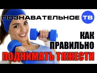 Как правильно поднимать тяжести (Познавательное ТВ, Герман Тюхтин)