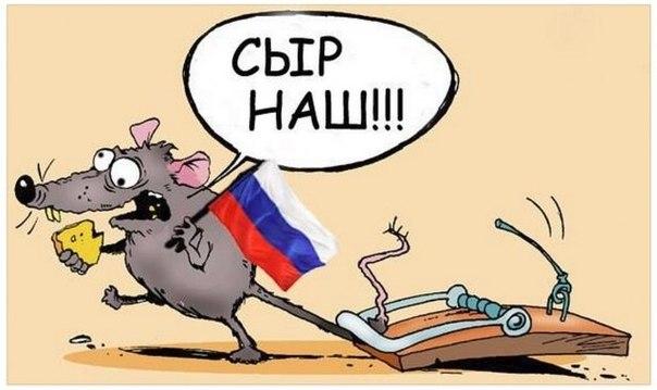 Порошенко обсудил с Меркель и Байденом ситуацию на востоке Украины - Цензор.НЕТ 7507