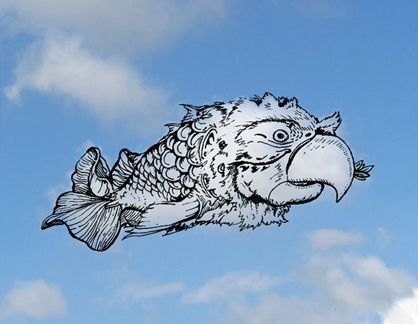 Parrot Fish Cloud