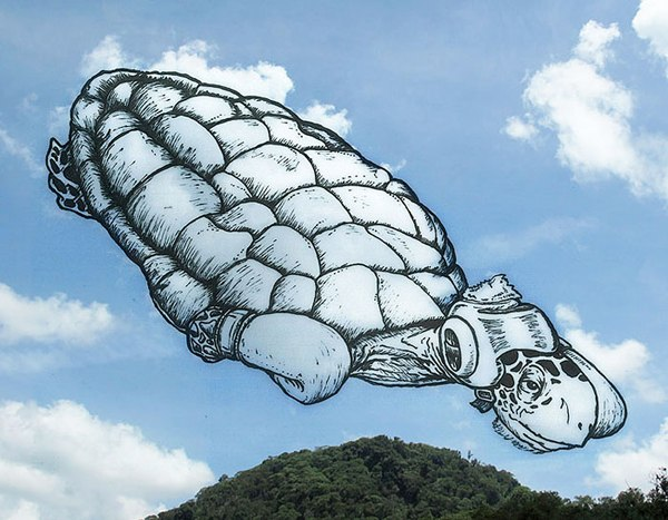 Boxing Turtle Cloud