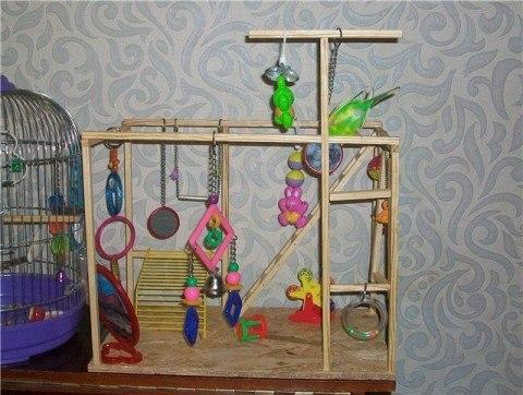 Игровые стенды для волнистых попугаев