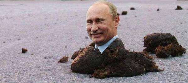 Порошенко встретится с Путиным с глазу на глаз - Цензор.НЕТ 967
