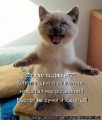 Катя Пугачева, 5 июня 1987, Чита, id103647848