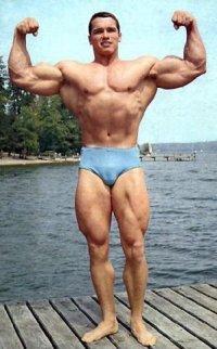Dfgsg Fgfg   VK Arnold Schwarzenegger