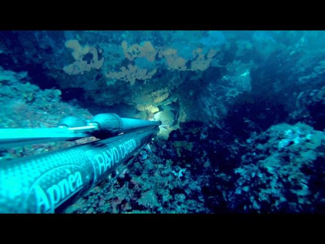 Chamber Fishing - George Chalikias
