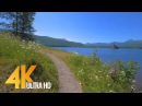 4K Nature Walk 4 5 HRS Forest River Fabulous Views with Calm Music and Birds Chirping