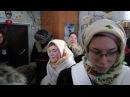 Колядование в деревне Пожарище (Нюксенский р-н Вологодской обл., святки 2018).