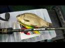 Это что за покемон Это дядя золотой карась на воблер ШОК! onlyfishing рыбалка