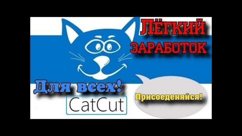Как легко заработать на своих ссылках с catcut? Самый простой заработок в интернете!