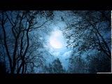 Dark Sanctuary - De Lumi