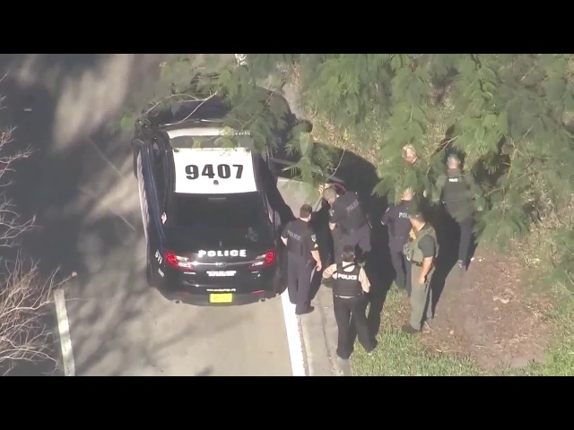 Suspect in handcuffs after mass shooting in FL high school
