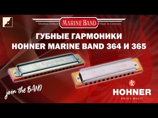 Обзор губной гармоники HOHNER Marine Band 364 и 365