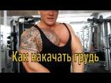 Как накачать большую грудь