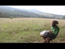Playing Pantam/Hand-pan in Nature (Hungary)
