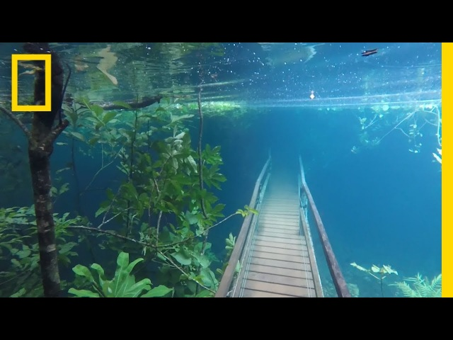 Heavy Rains Submerge Hiking Trails in Crystal Clear Waters National Geographic