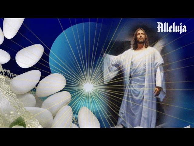 ♫♥♫ ŻYCZENIA WIELKANOCNE ♫♥♫ WESOLEGO ALLELUJA !