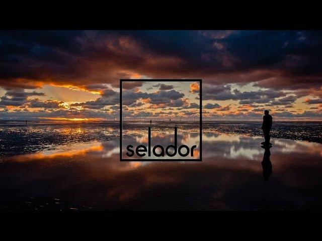 Dave Seaman Night Falls OC Verde Remix Selador