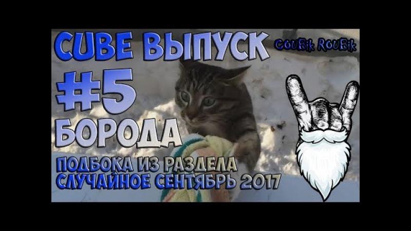 Лучшие борадатые кубы (CUBE) по версии COUBik Выпуск 5