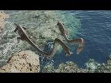 Морские динозавры 3D  Путешествие в доисторический мир  Документальные фильмы