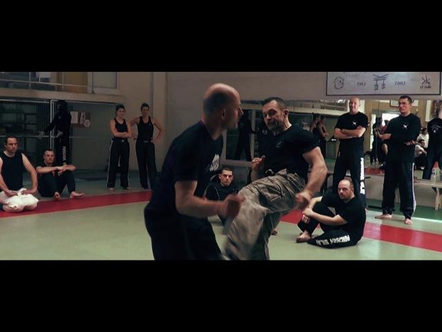 Best of krav maga karaté contact MMA par karim CLEMENCEAU