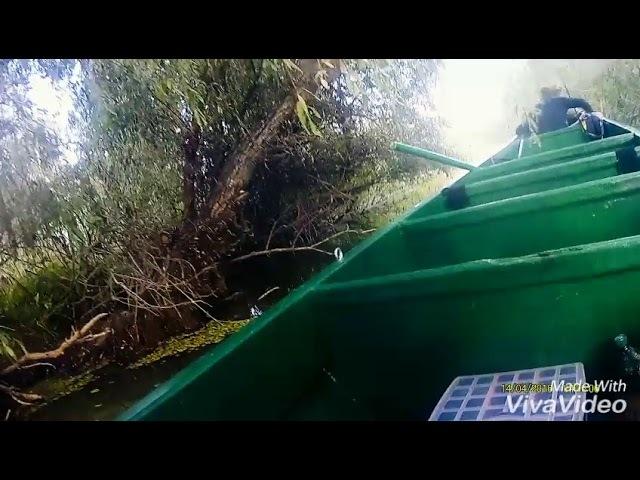 Астраханская рыбалка,Володарский район база Кара-Агач