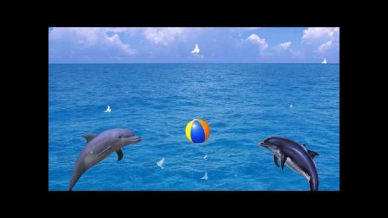 Физминутка Дельфинчики