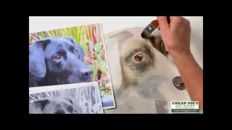 How to Paint a Dog's Face with Watercolor Artist Nancy Couick-Part 2