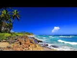 Instant Stress Relief with Relaxing Music and Ocean Sounds - Really Helps!
