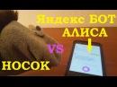 ЯНДЕКС БОТ АЛИСА - НОСОК ФИЛОСОФ