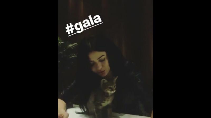 """@denizimcakirim on Instagram """"Evet bilindiği gibi yeni ikilimiz.😃Deniz ve Cüce Beyaz😍🙈Tekrar söylemekte yarar var Şati sen bakma!😁😁😁😁 @denizcakir ..."""