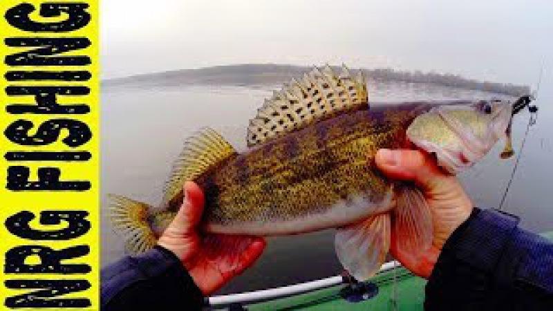 Рыбалка на судака | Зимний спиннинг