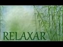 Música para Dormir com Som de Chuva e Natureza Relaxar e Acalmar a Mente