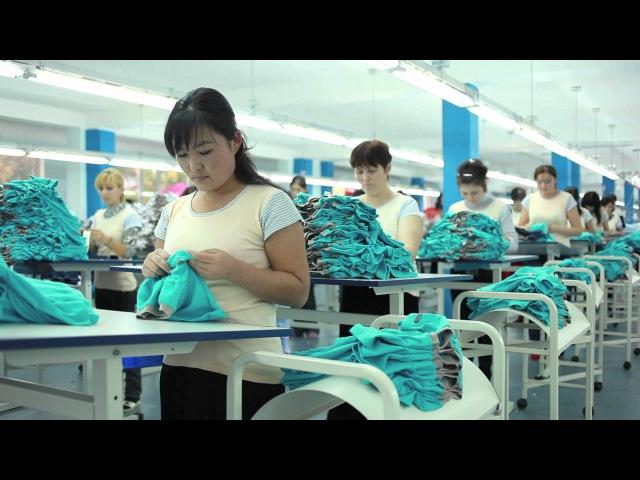 фабрика Crockid Tashkent