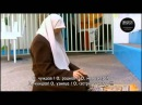 Нашид сестрам в Исламе