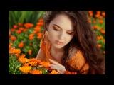 Анна Ахматова - Объясни мне папа, как мужчина (стих)