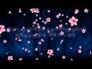 Buka Managadze - Yvavilebi Tovda Tovda / ბუკა მანაგაძე - ყვავილები თოვად თოვ4