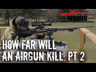 How Far Will an Air Rifle Kill? Part 2