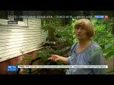 Новости на Россия 24    Неизвестные совершили нападение на дом Латыниной в Переделкине