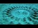 Самая невероятная рыба Японский Иглобрюх рыба художник