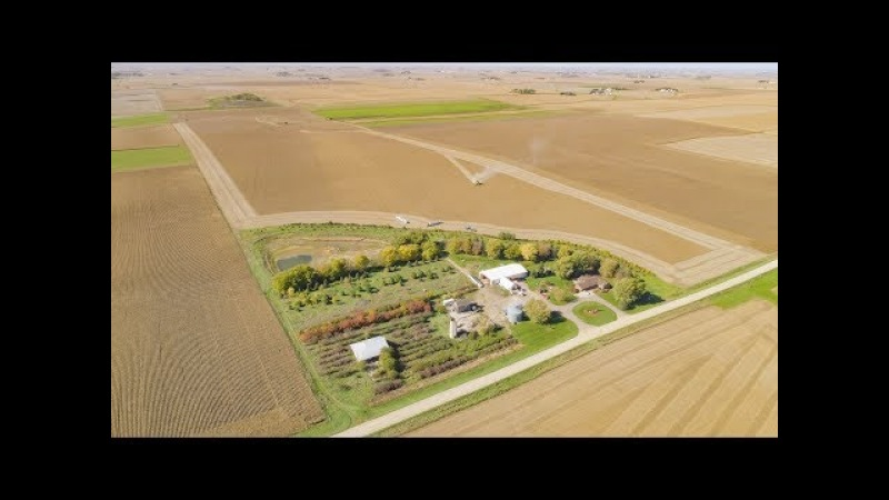 Incredible Midwest Harvest Footage 2017 | Shot in 4k on Phantom 4 Pro | Iowa In 4K