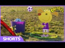 CBeebies: Footy Pups - Catching The Ball
