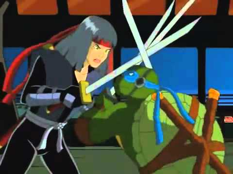 TMNT s02e20 Rogue In The House Part 2 (WIDESCREEN)