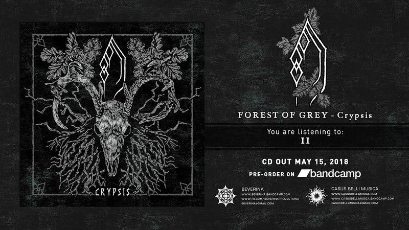 FOREST OF GREY - Crypsis [Full album]