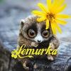 Lemurka   Игрушки