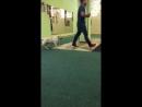 Video-1502871239