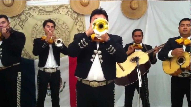Somos Novios ( by Mariachi Calmecac )